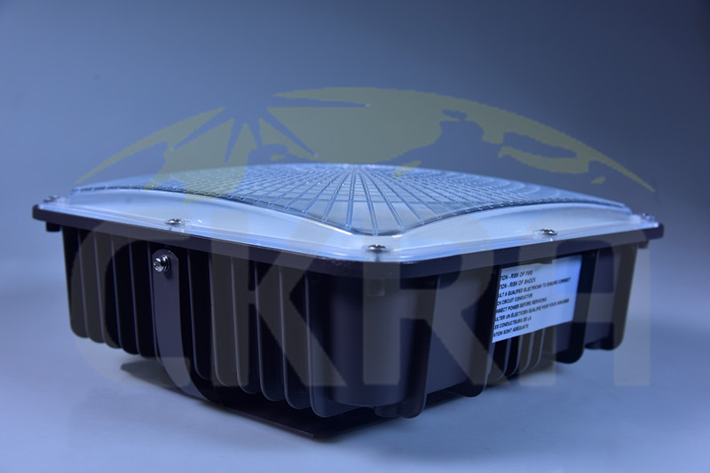 Low Profile LED Canopy Light