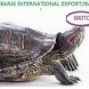 Barai international catalog