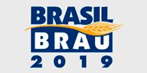 BRASIL BRAU 2019, logo