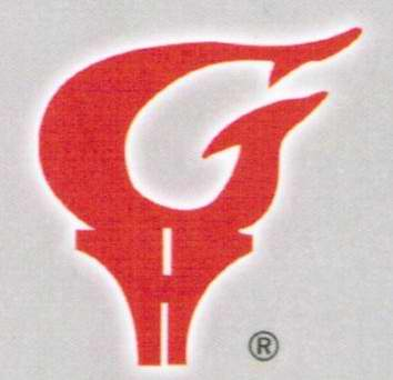 Glarysat Electronics Co., Ltd logo