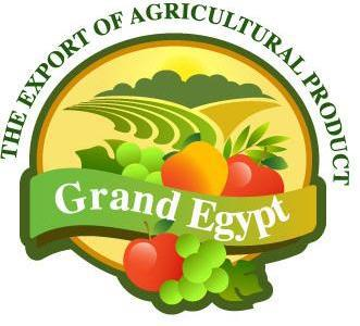 Grand Egypt Agro For Import &Export logo