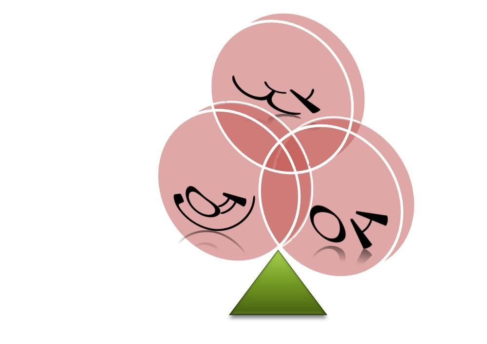 JaYeonAe logo