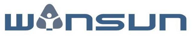 Shanghai Winsun International Inc. logo