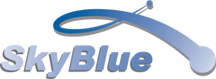 Shanghai Skyblue Chemical Co Ltd logo
