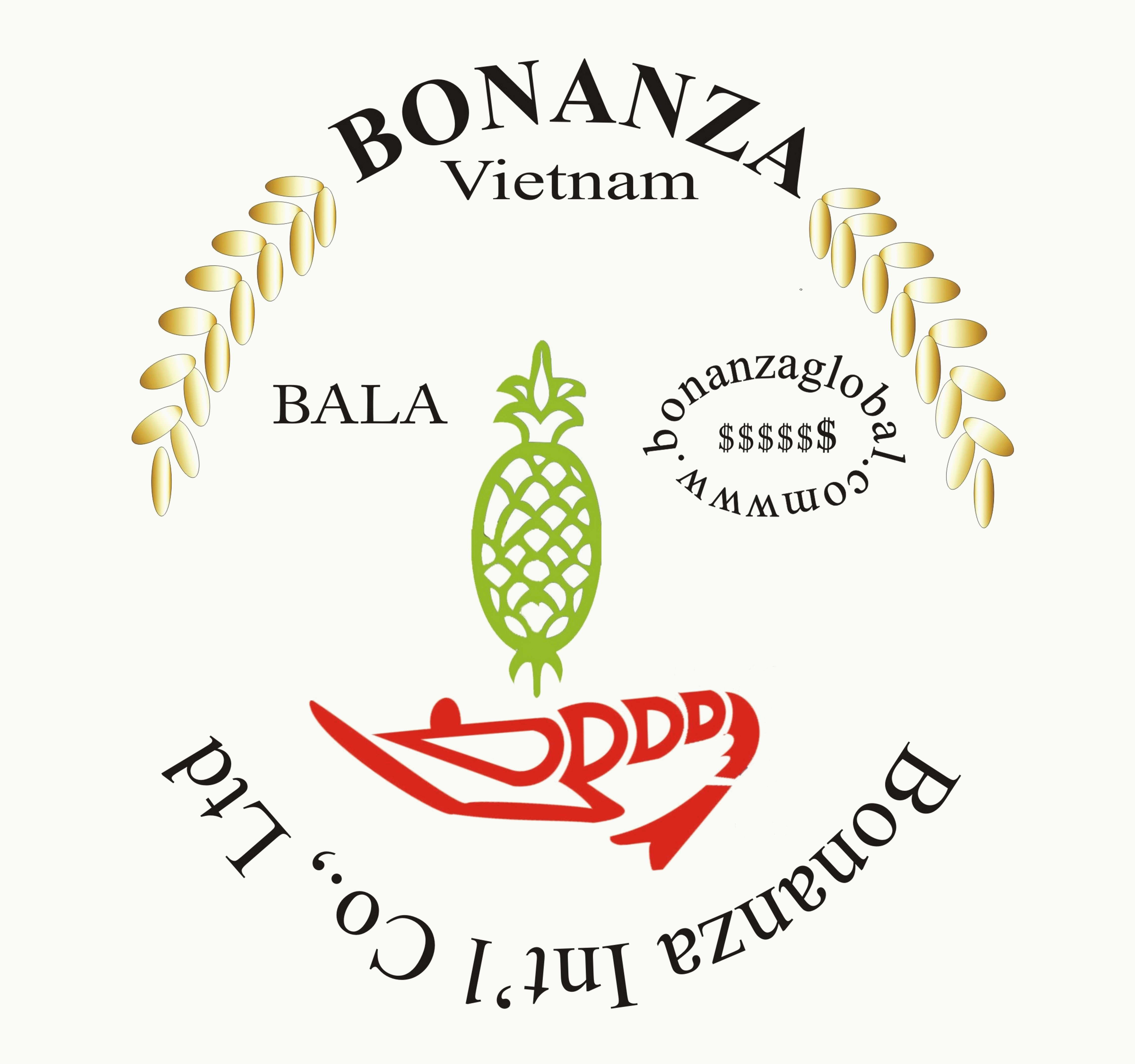 Bonanza International Co., Ltd Vietnam logo