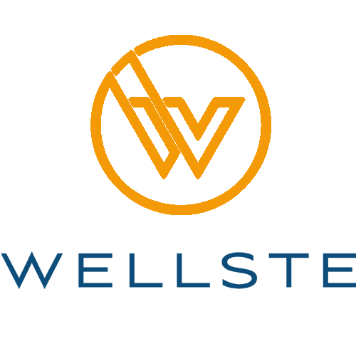 Wellste Material Co.,Ltd logo