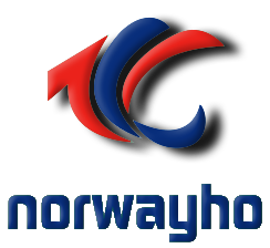 Ningbo Norwayho Auto Parts Co., Ltd. logo