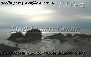 Steel Import Group Ltd logo
