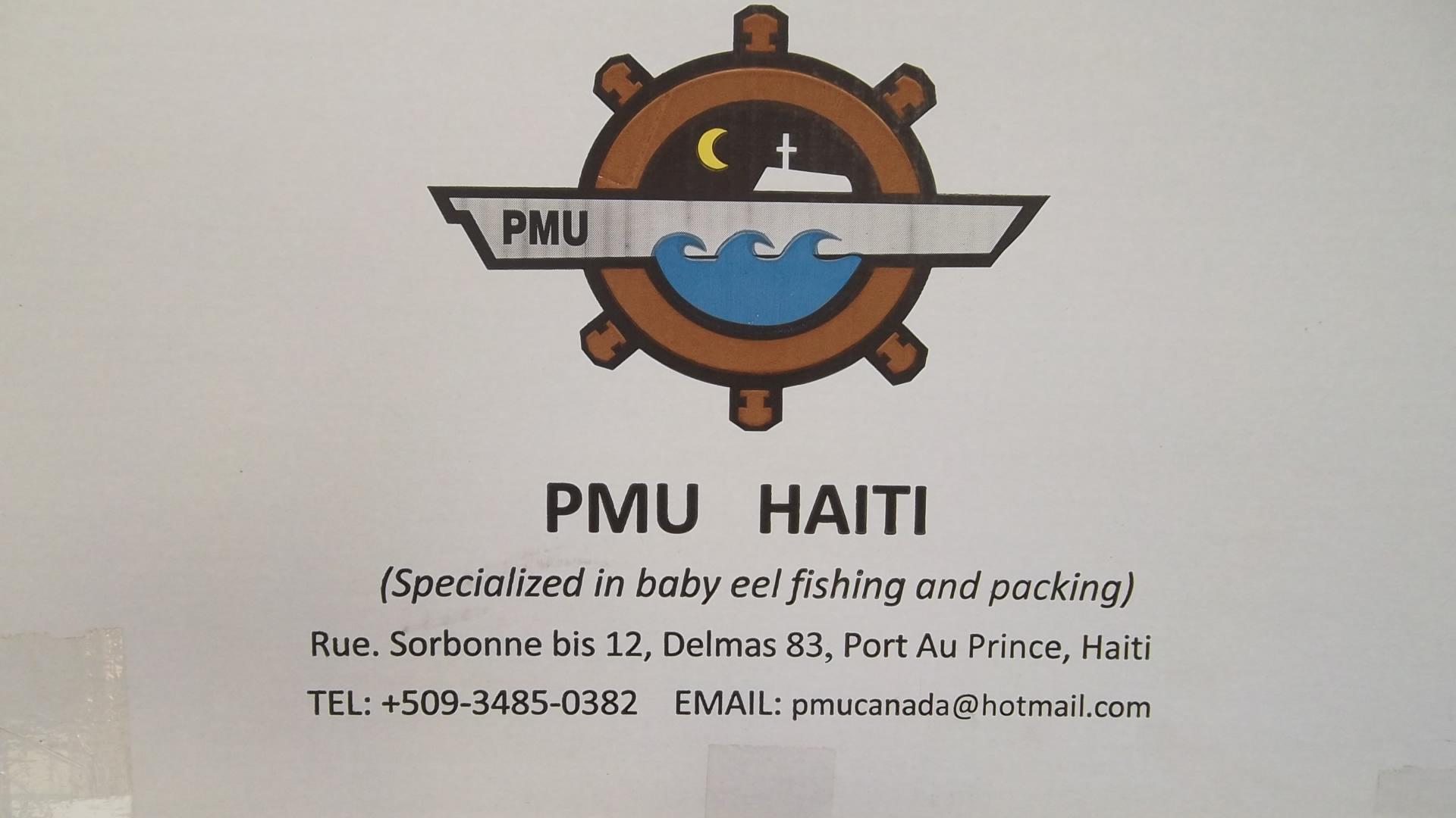 PMUGROUP logo