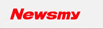 Newsmy car electronic division logo