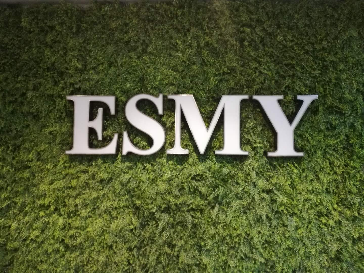Zhejiang ESMY New Materials Technology Co.Ltd logo
