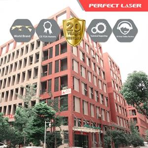 Perfect Laser (Wuhan) Co., Ltd. logo