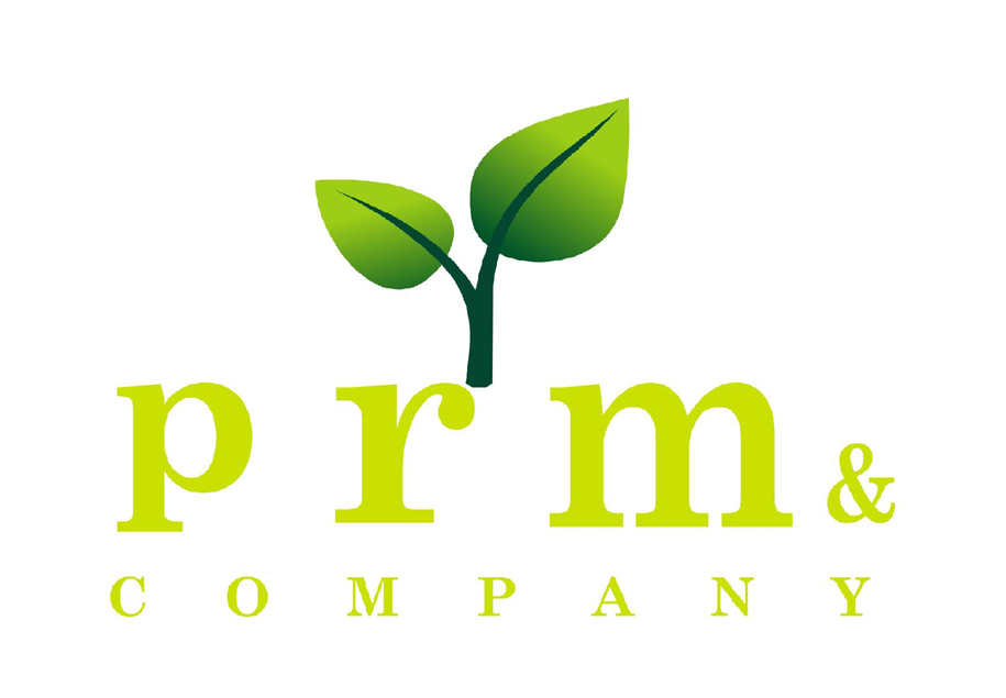 PRM & COMPANY logo