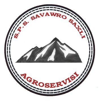 Trading House Agro Service  LTD logo
