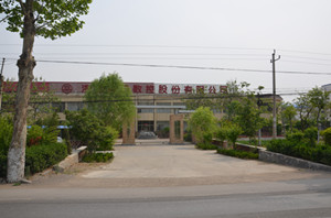Shandong Tongri Power Science and Technology Co.,Ltd logo