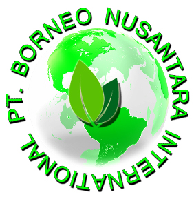 PT. Borneo Nusantara International logo