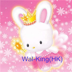 HONGKONG WAL-KING ELECTRONIC Co.,LTD logo