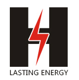 Zhongshan Lasting Energy Electronic Technology Co., Ltd. logo