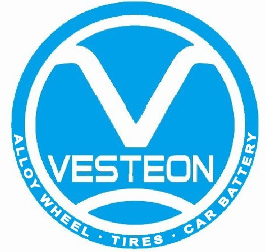 Shandong Vesteon Automotive Parts Group Co.,Ltd. logo