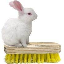 White Rabbit Detergents logo