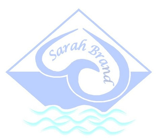 Sarah Interprises logo