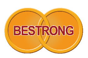Shandong Bestrong Group Co,ltd logo