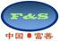 CHINA F and S GROUP logo