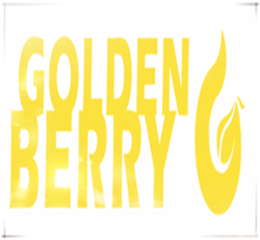 Beijing Golden Berry Hoisting Machinery Group logo