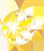SZ ZHN inflatable.,LTD logo