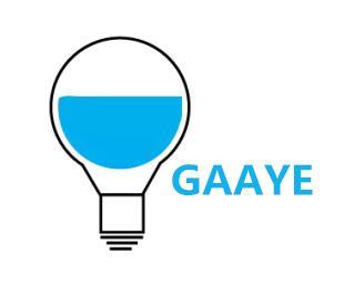 Guangzhou Gaaye Electronics Co., Ltd logo