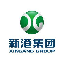 Shandong Xingang Group logo