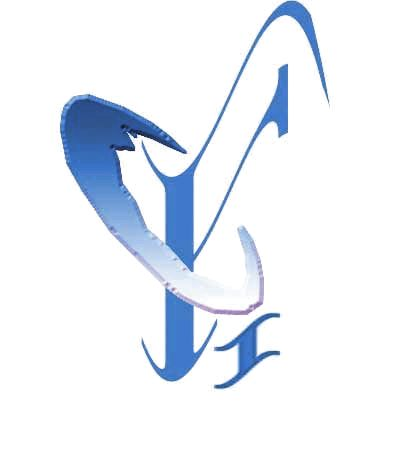 Fuchun Industry Development Co.,Ltd logo