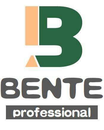 Shenzhen Bente Circuit Limited logo
