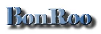 Bonrun Technology Co.Ltd logo
