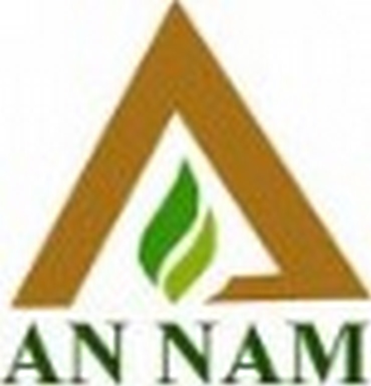 An Nam International Co., Ltd logo