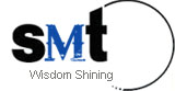 Wisdom Shining Electronic Technology (China) Limited logo