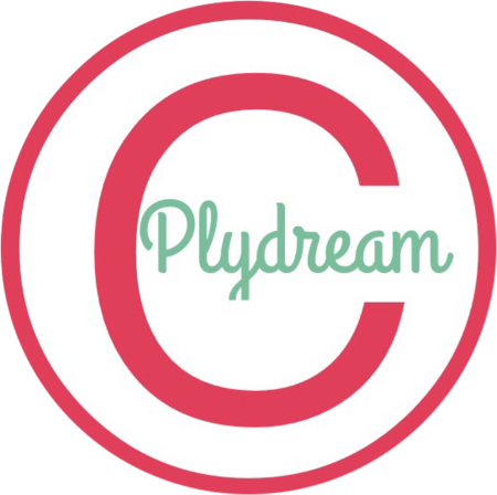 Nanning Plydream Limited logo