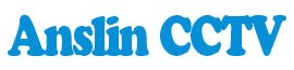 Shenzhen Anslin Electronics Co., Ltd logo