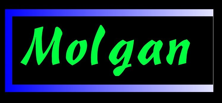 Molgan Technology  Inc Ltd logo