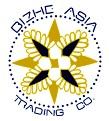 BIZHE ASIA CO. logo