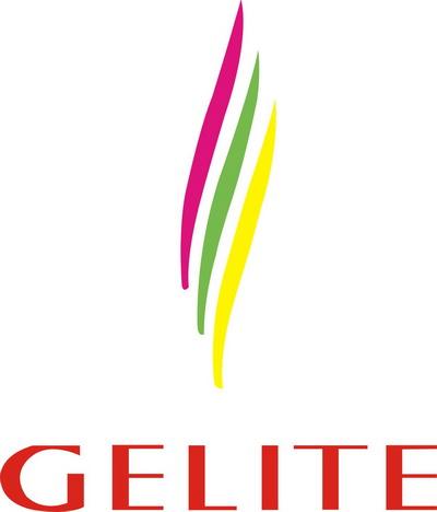 Fuding Glitter Pigments Co., Ltd logo