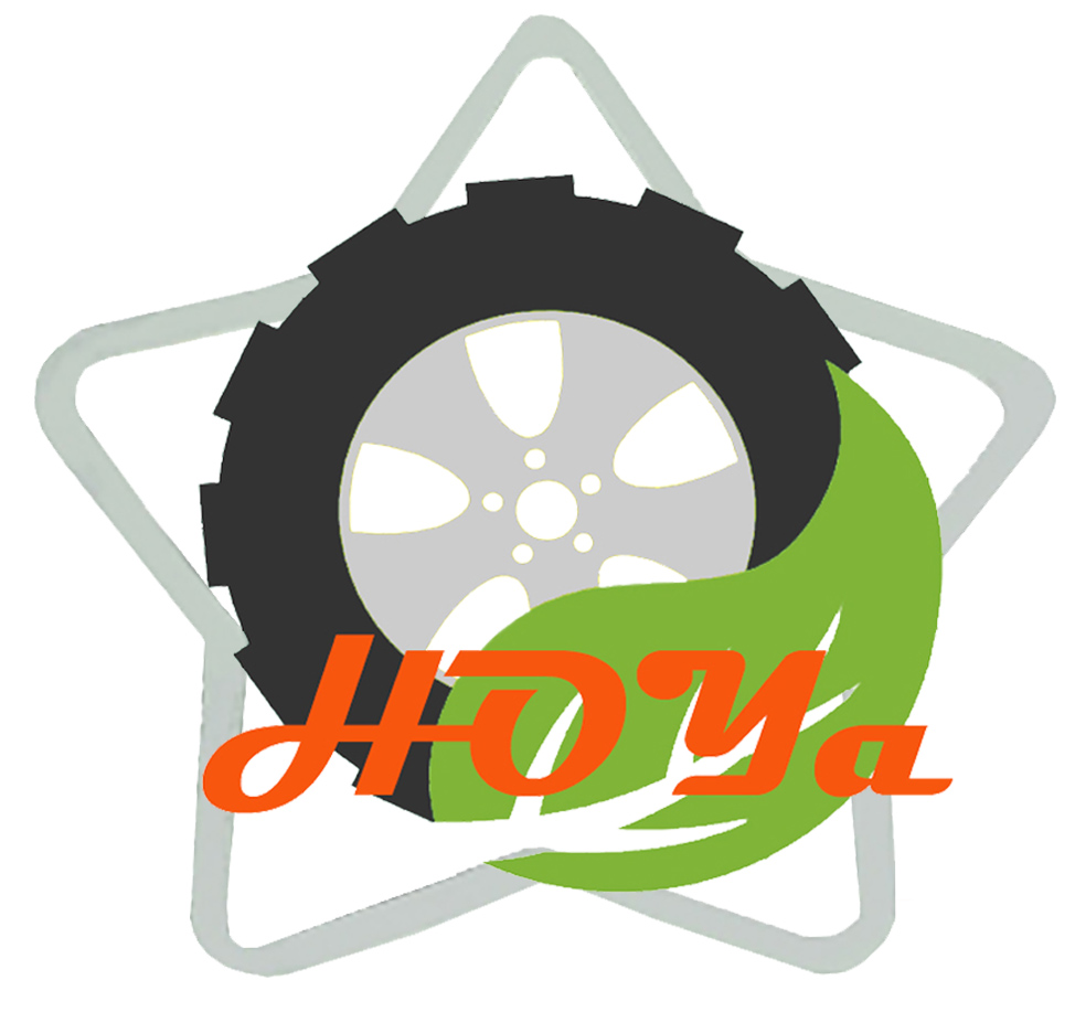 HOYA STAR INTERNATIONAL LIMITED logo