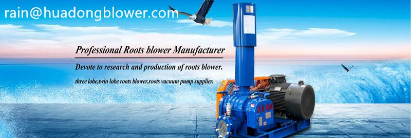 Shandong Huadong roots blower, rotary blower and vacuum pumps Co.,Ltd logo