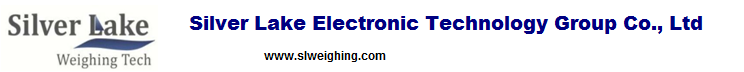 Silver Lake Eelectronic Technology Group Co.,Ltd logo