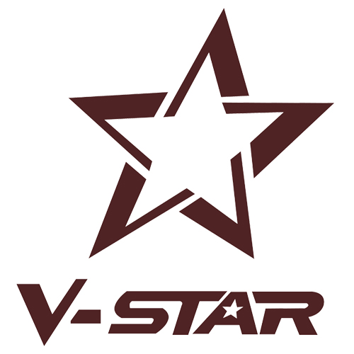Fuzhou V-Star Homedecor Co.,Ltd. logo