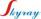 Jisngsu Skyray Instrument Co.,Ltd. logo