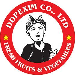 DDPEXIM CO., LTD logo