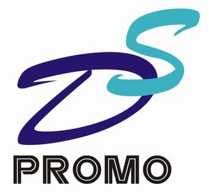 DS Promo Ltd logo