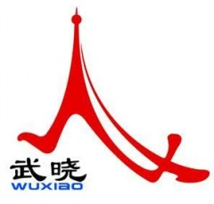 Qingdao Wuxiao Group Co.,LTD logo