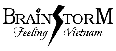 Brainstorm Trading Company Limited logo
